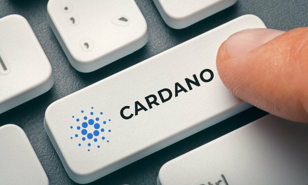 Wait for this before getting into Cardano or Chainlink again