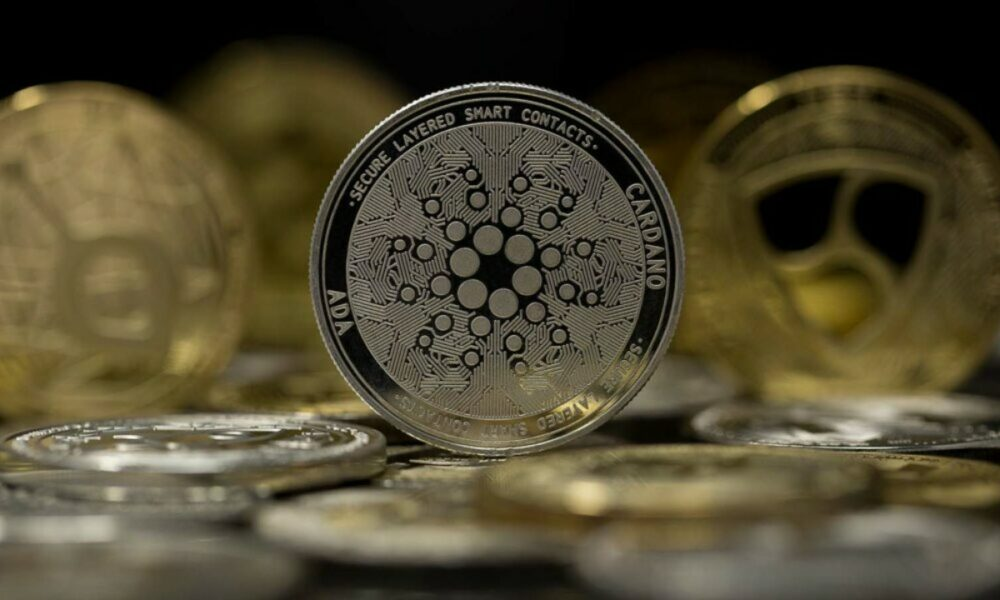 Cardano investors have this to look forward to