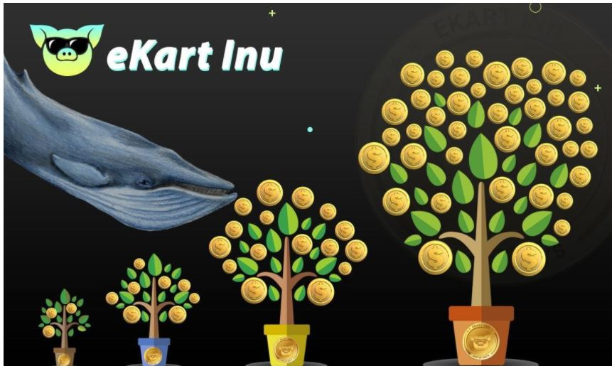 Ekart Inu trends in bull race: Early holders will soon become millionaires